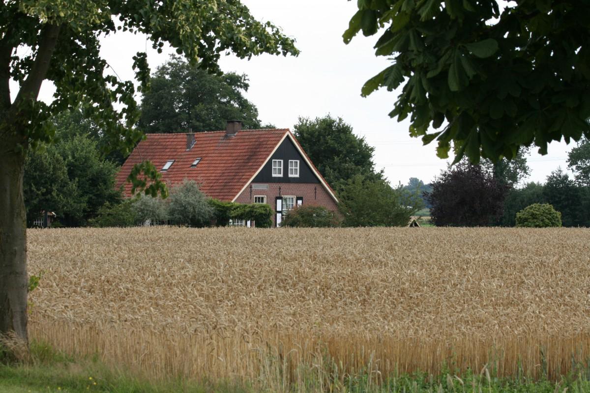 Zendersche Esch Zuid